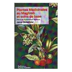Plantes médicinales au Maghreb et soins de base