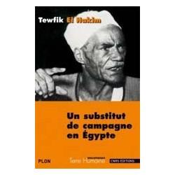 Un substitut de campagne en Egypte/ Journal d'un substitut de procureur égyptien